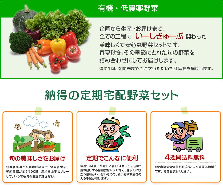 美味しくて安心な有機・低農薬野菜。納得の定期宅配野菜セット。「旬の美味しさをお届け」「定期でこんなに便利」「4週間送料無料」